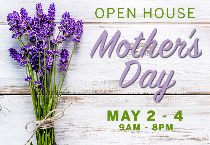 Dutch Valley Gifts Mother's DAy Open House